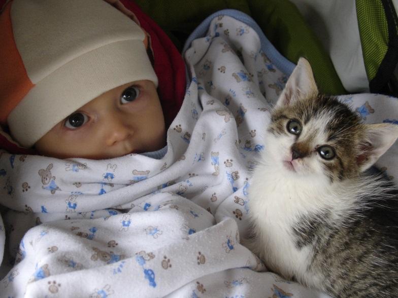 Giardioza – choroba szczególnie niebezpieczna dla dzieci